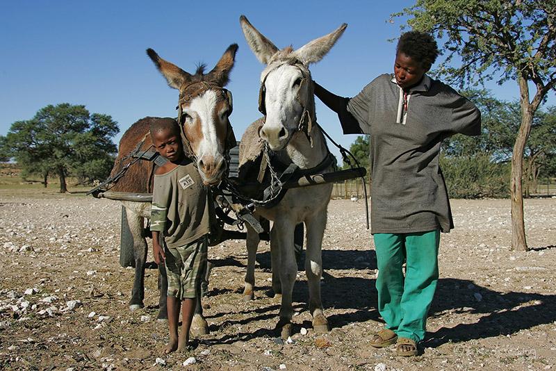Südafrikanische Farmer. Quelle: www.fotofeeling.com